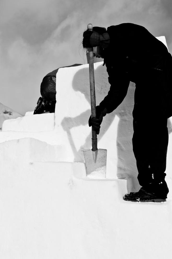 ART IN ICE - work in progress 2012