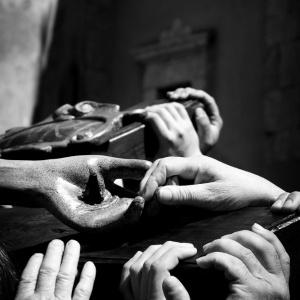 Il potero delle mani